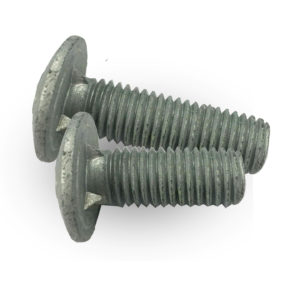 Fin Neck bolt or round head bolt din 603