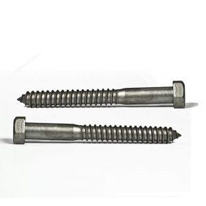 lag screw supplier in dubai